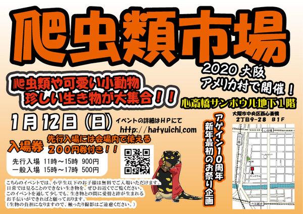 2020'爬虫類市場inアメリカ村出店!!!